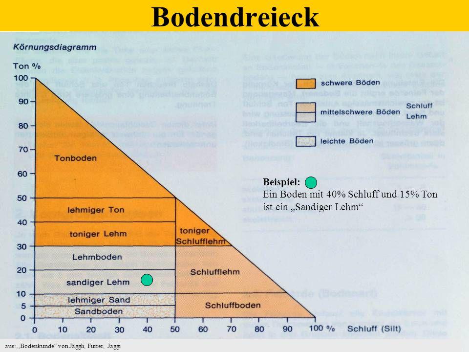 1.Bodenanalyse: informiert über Grundversorgung mit P, K, Mg, Humus, pH-Wert.