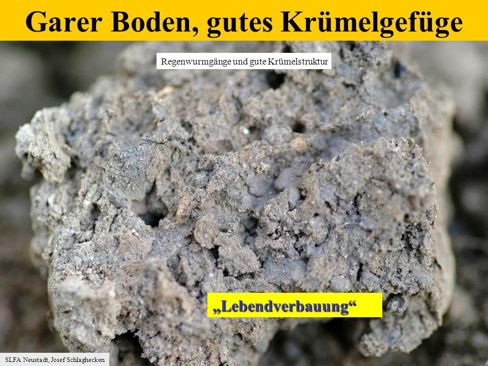 mg/100 g Boden Nährstoffüberschuß-Versorgung in Gartenböden (Du rchschnitt aus 69 Proben 2004) Quelle: Bolap/Lufa Speyer