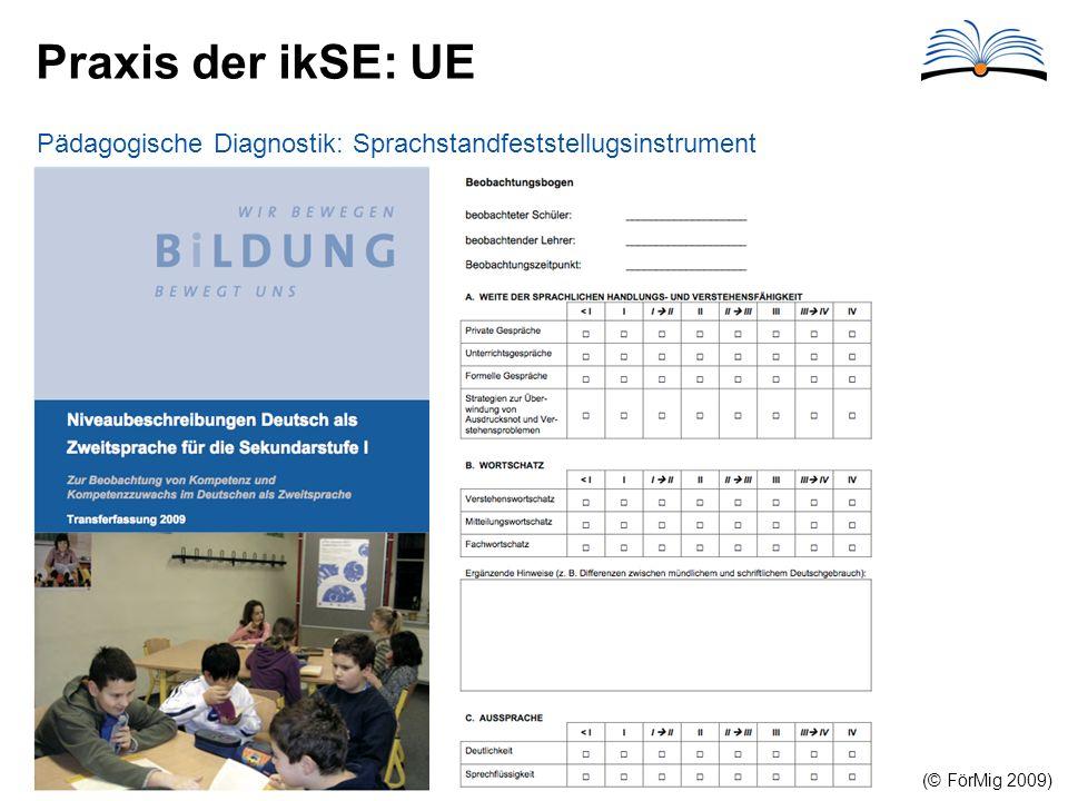 Praxis der ikSE: UE (© FörMig 2009) Pädagogische Diagnostik: Sprachstandfeststellugsinstrument