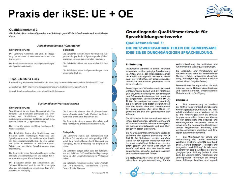 Praxis der ikSE: UE + OE