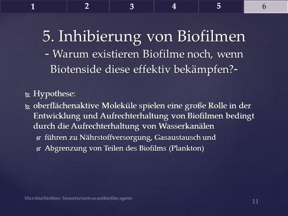  Hypothese:  oberflächenaktive Moleküle spielen eine große Rolle in der Entwicklung und Aufrechterhaltung von Biofilmen bedingt durch die Aufrechter