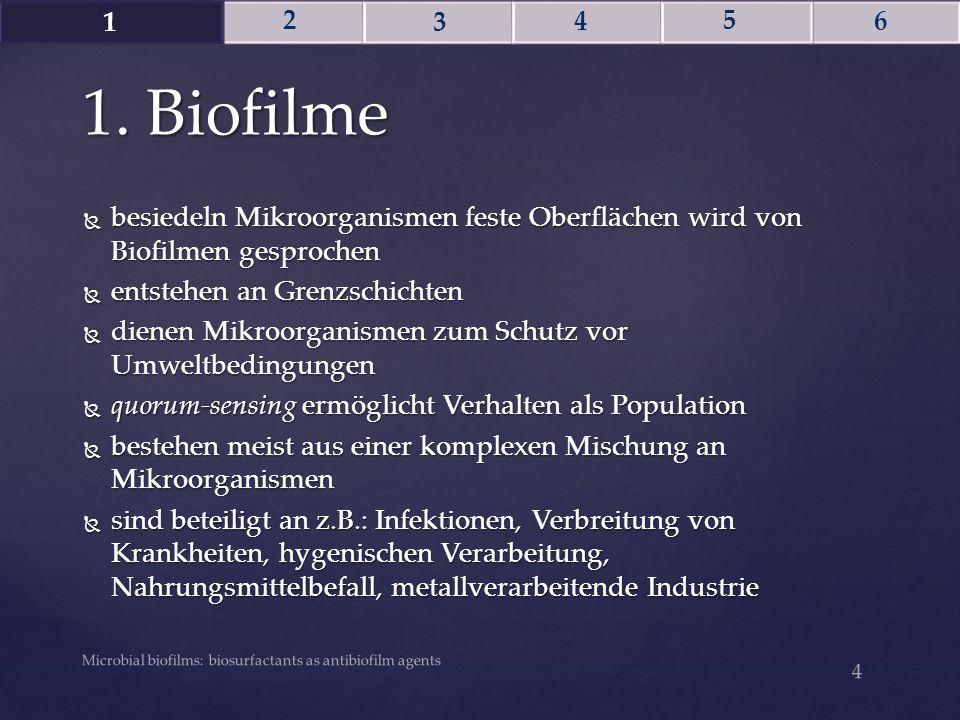 1. Biofilme Microbial biofilms: biosurfactants as antibiofilm agents 4  besiedeln Mikroorganismen feste Oberflächen wird von Biofilmen gesprochen  e