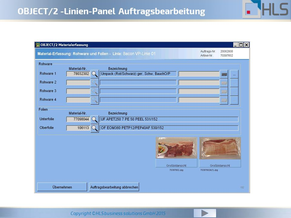 Copyright ©HLS business solutions GmbH 2015 OBJECT/2 -Linien-Panel Auftragsbearbeitung