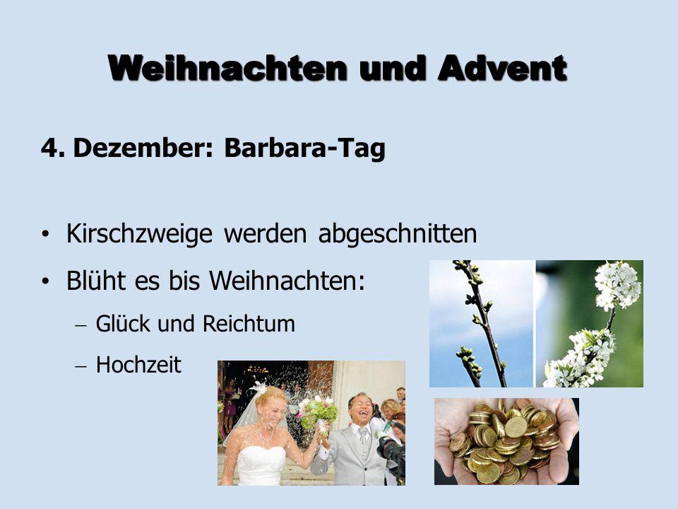 4. Dezember: Barbara-Tag Kirschzweige werden abgeschnitten Blüht es bis Weihnachten:   Glück und Reichtum   Hochzeit