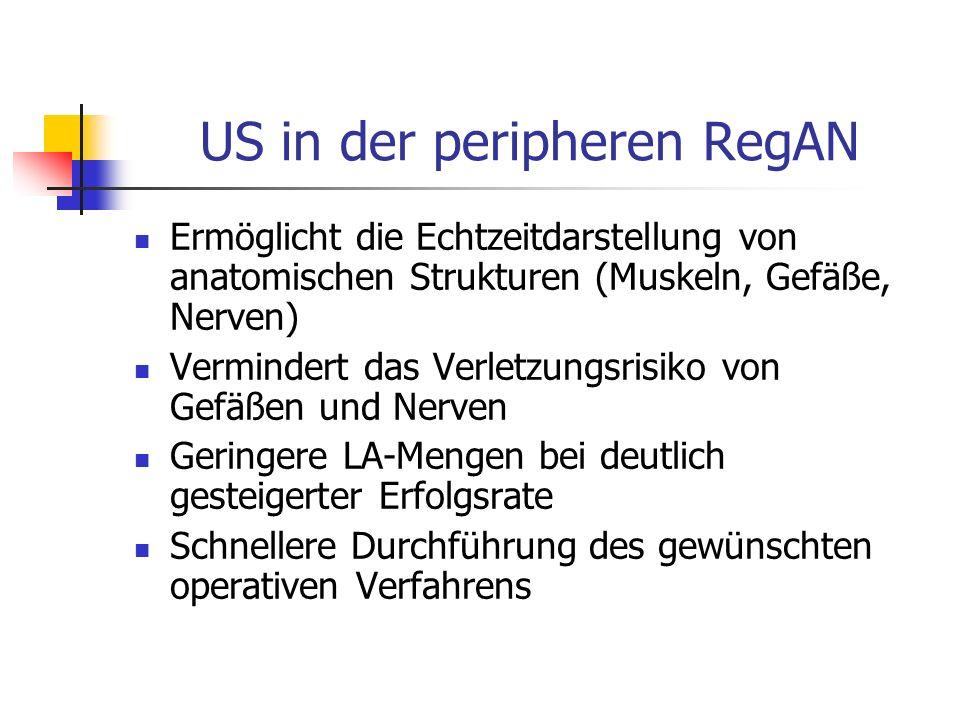 US in der peripheren RegAN Ermöglicht die Echtzeitdarstellung von anatomischen Strukturen (Muskeln, Gefäße, Nerven) Vermindert das Verletzungsrisiko v