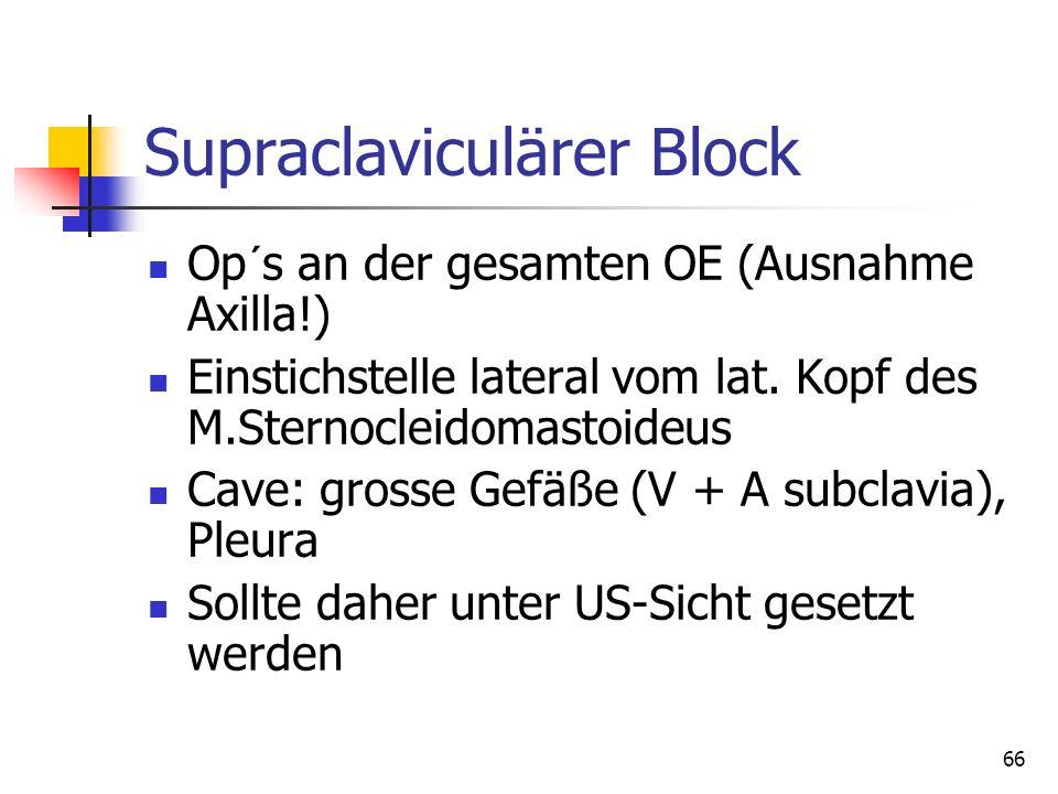 66 Supraclaviculärer Block Op´s an der gesamten OE (Ausnahme Axilla!) Einstichstelle lateral vom lat. Kopf des M.Sternocleidomastoideus Cave: grosse G