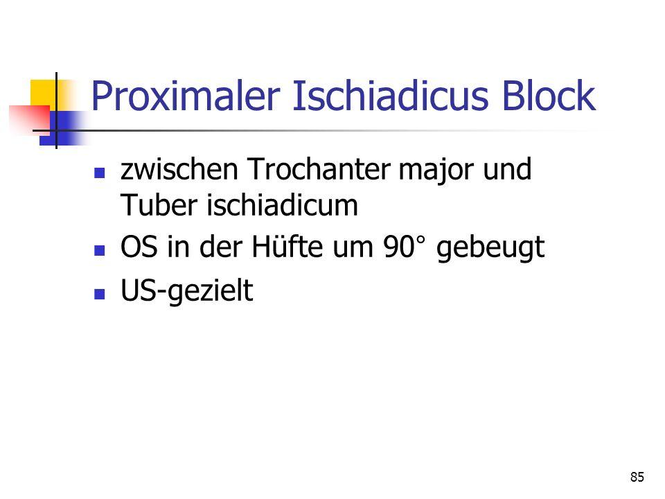85 Proximaler Ischiadicus Block zwischen Trochanter major und Tuber ischiadicum OS in der Hüfte um 90° gebeugt US-gezielt