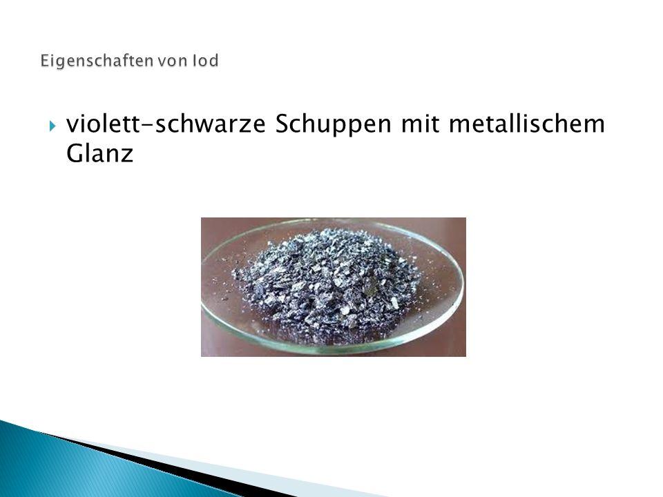  violett-schwarze Schuppen mit metallischem Glanz