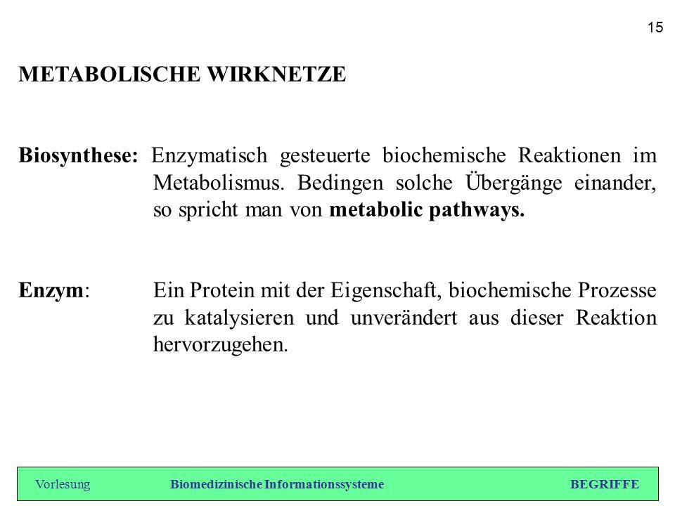 METABOLISCHE WIRKNETZE Biosynthese: Enzymatisch gesteuerte biochemische Reaktionen im Metabolismus. Bedingen solche Übergänge einander, so spricht man
