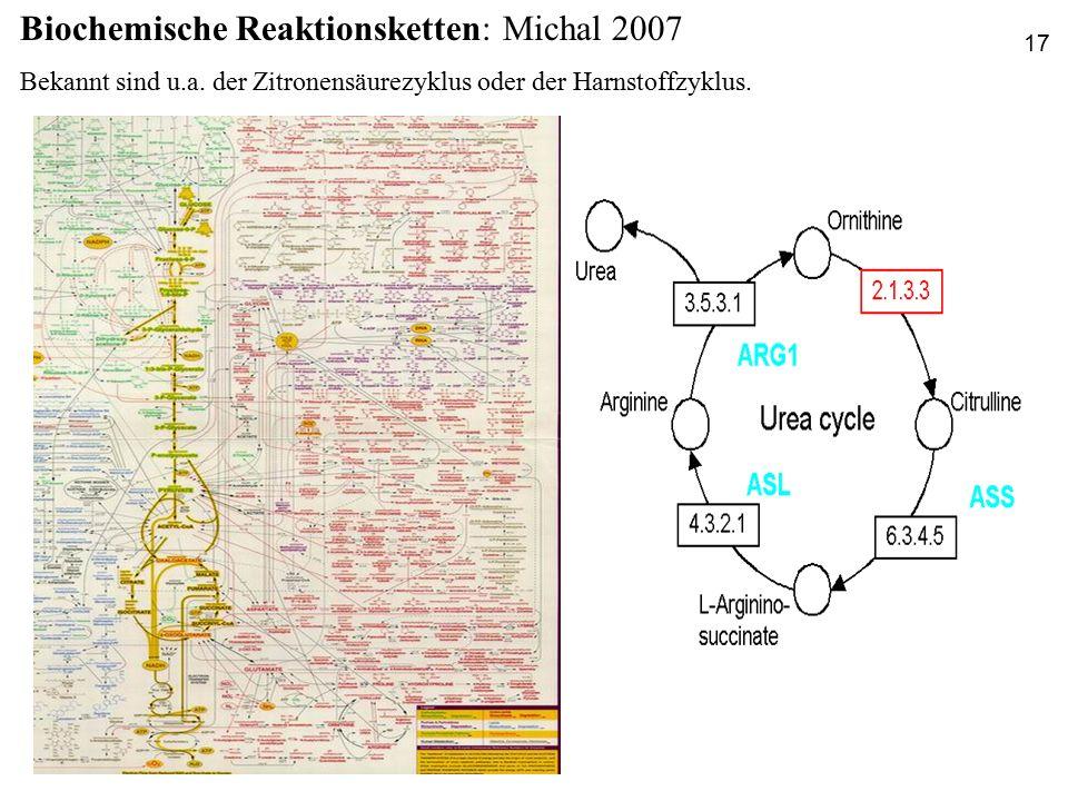 Biochemische Reaktionsketten: Michal 2007 Bekannt sind u.a. der Zitronensäurezyklus oder der Harnstoffzyklus. 17