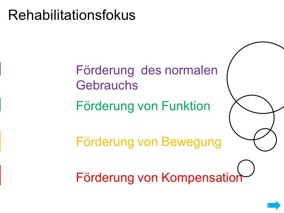 Rehabilitationsfokus Eingeschränkt Limitiert Kein Vollständig Förderung des normalen Gebrauchs Förderung von Funktion Förderung von Bewegung Förderung von Kompensation