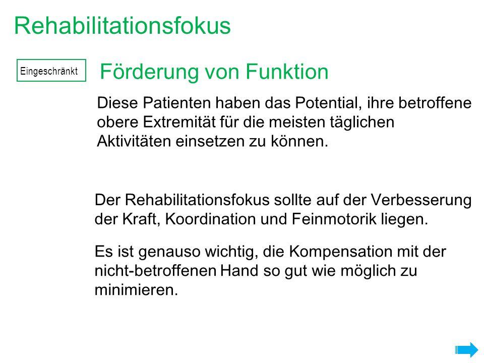Förderung von Funktion Rehabilitationsfokus Es ist genauso wichtig, die Kompensation mit der nicht-betroffenen Hand so gut wie möglich zu minimieren.