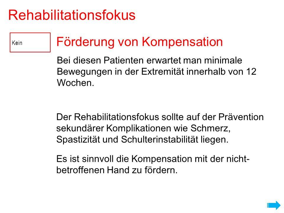 Förderung von Kompensation Rehabilitationsfokus Es ist sinnvoll die Kompensation mit der nicht- betroffenen Hand zu fördern. Der Rehabilitationsfokus