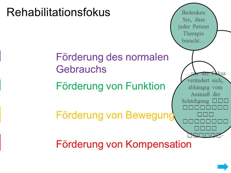 Rehabilitationsfokus Eingeschränkt Limitiert Kein Vollständig Bedenken Sie, dass jeder Patient Therapie braucht… …nur der Fokus verändert sich, abhängig vom Ausmaß der Schädigung der motorisc hen absteige nden Bahnen.