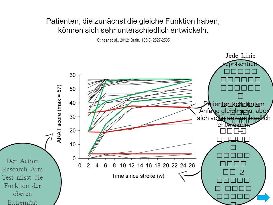 Patienten, die zunächst die gleiche Funktion haben, können sich sehr unterschiedlich entwickeln. Stinear et al., 2012; Brain, 135(8):2527-2535 Die Mes