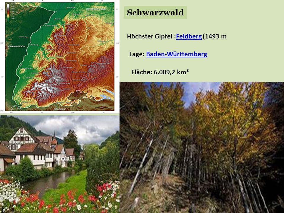 Schwarzwald Höchster Gipfel :Feldberg (1493 mFeldberg Lage: Baden-WürttembergBaden-Württemberg Fläche: 6.009,2 km²