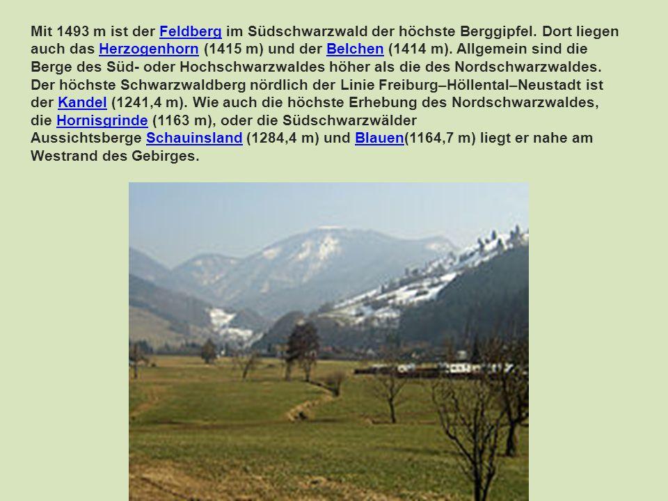 Mit 1493 m ist der Feldberg im Südschwarzwald der höchste Berggipfel. Dort liegen auch das Herzogenhorn (1415 m) und der Belchen (1414 m). Allgemein s