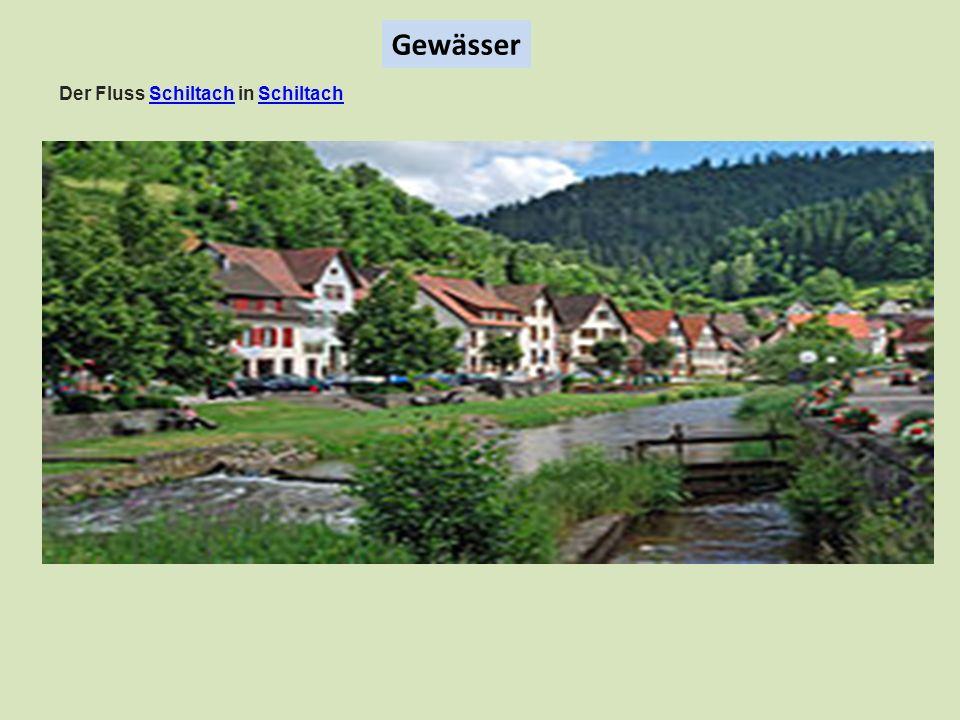 Gewässer Der Fluss Schiltach in SchiltachSchiltach