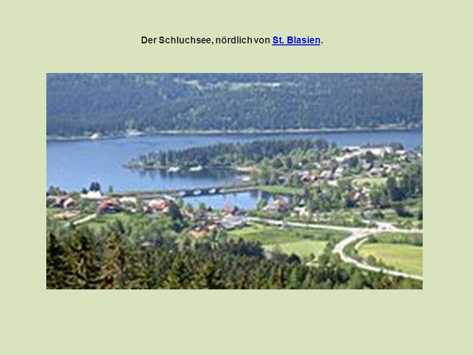 Die größten Schwarzwaldflüsse sind : Enz (105 km)Enz Kinzig (93 km)Kinzig Elz (90 km)Elz Nagold (90 km)Nagold Wutach (90 km)Wutach Murg (79 km)Murg Rench (57 km)Rench Schutter (56 km)Schutter Wiese (55 km)Wiese Acher (54 km)Acher Dreisam (mit Rotbach 49 km)DreisamRotbach Breg (46 km), längster Quellfluss der Donau (2857 km)BregDonau Alb (mit Menzenschwander Alb 43 km)Alb Brigach (40 km), Quellfluss der DonauBrigach Glatt (37 km),Glatt Möhlin (32 km)Möhlin Wolf (31 km)Wolf Schiltach (30 km)Schiltach Wehra (mit Rüttebach 28 km)Wehra Oos (25 km)Oos