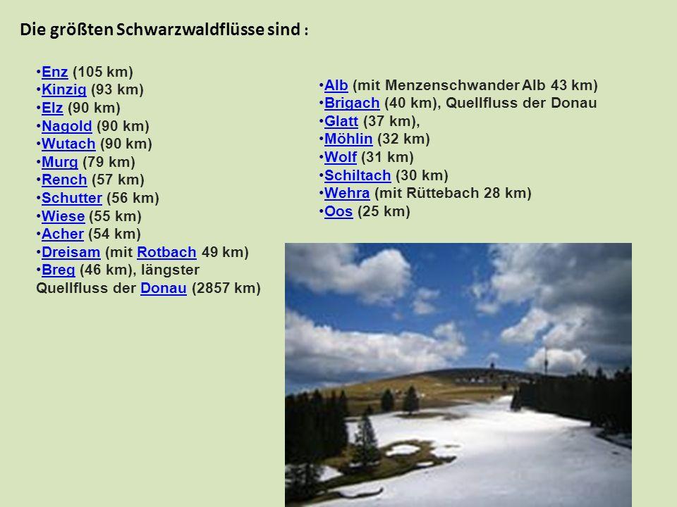 Die größten Schwarzwaldflüsse sind : Enz (105 km)Enz Kinzig (93 km)Kinzig Elz (90 km)Elz Nagold (90 km)Nagold Wutach (90 km)Wutach Murg (79 km)Murg Re