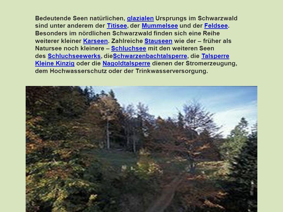 Bedeutende Seen natürlichen, glazialen Ursprungs im Schwarzwald sind unter anderem der Titisee, der Mummelsee und der Feldsee. Besonders im nördlichen