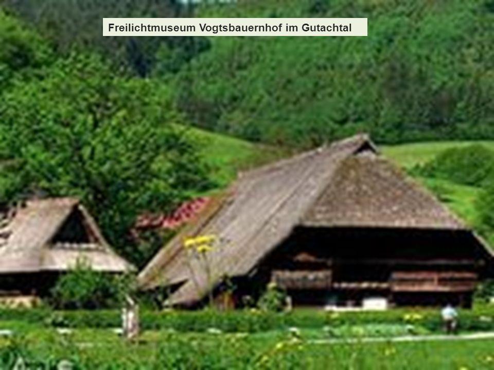 Freilichtmuseum Vogtsbauernhof im Gutachtal