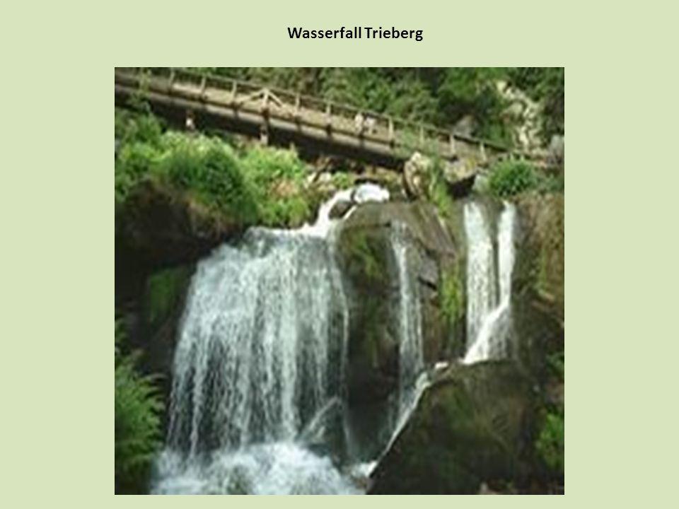 Wasserfall Trieberg