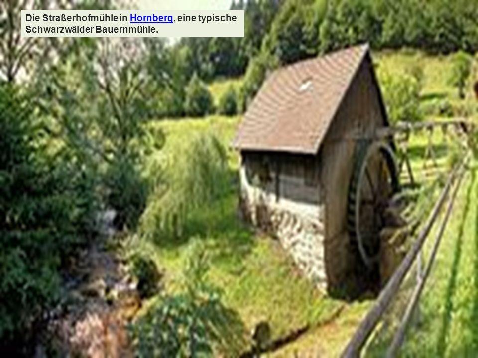 Die Straßerhofmühle in Hornberg, eine typische Schwarzwälder Bauernmühle.Hornberg