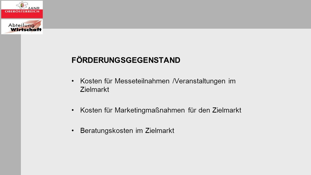 FÖRDERUNGSGEGENSTAND Kosten für Messeteilnahmen /Veranstaltungen im Zielmarkt Kosten für Marketingmaßnahmen für den Zielmarkt Beratungskosten im Zielmarkt