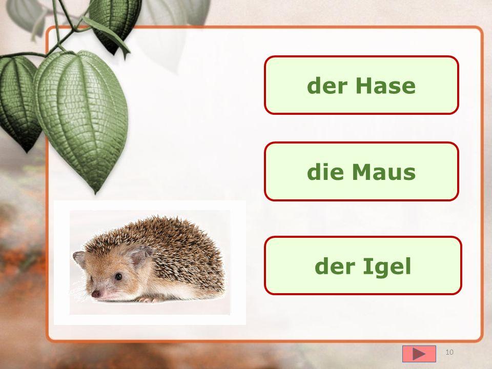 далее der Wolf der Fuchs die Maus 9