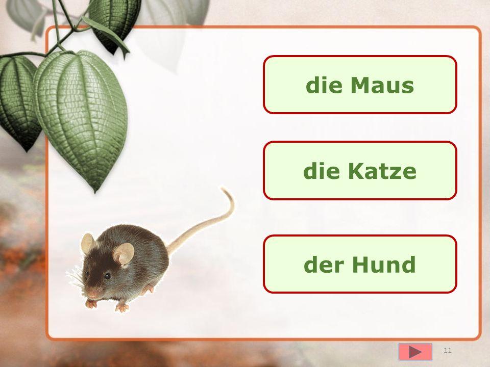 далее der Hase die Maus der Igel 10