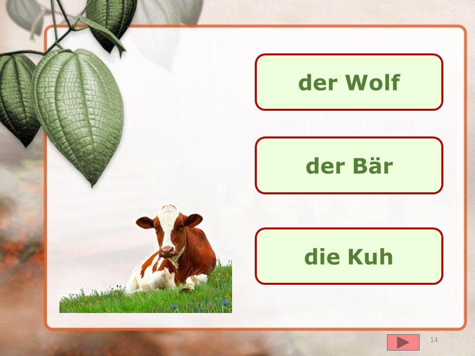 далее das Pferd die Kuh das Schwein 13