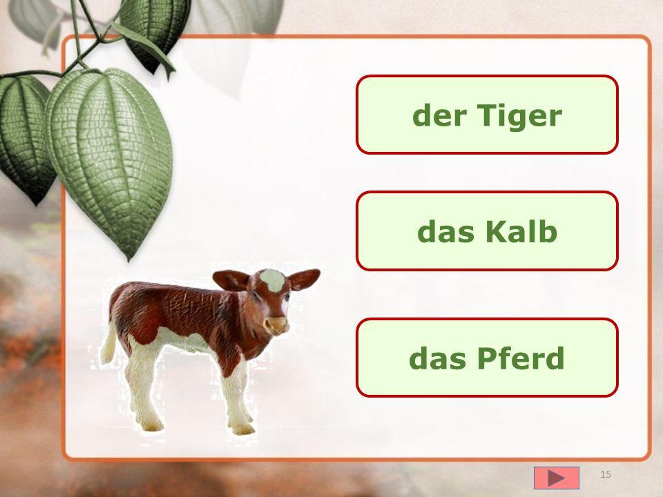 далее der Wolf der Bär die Kuh 14