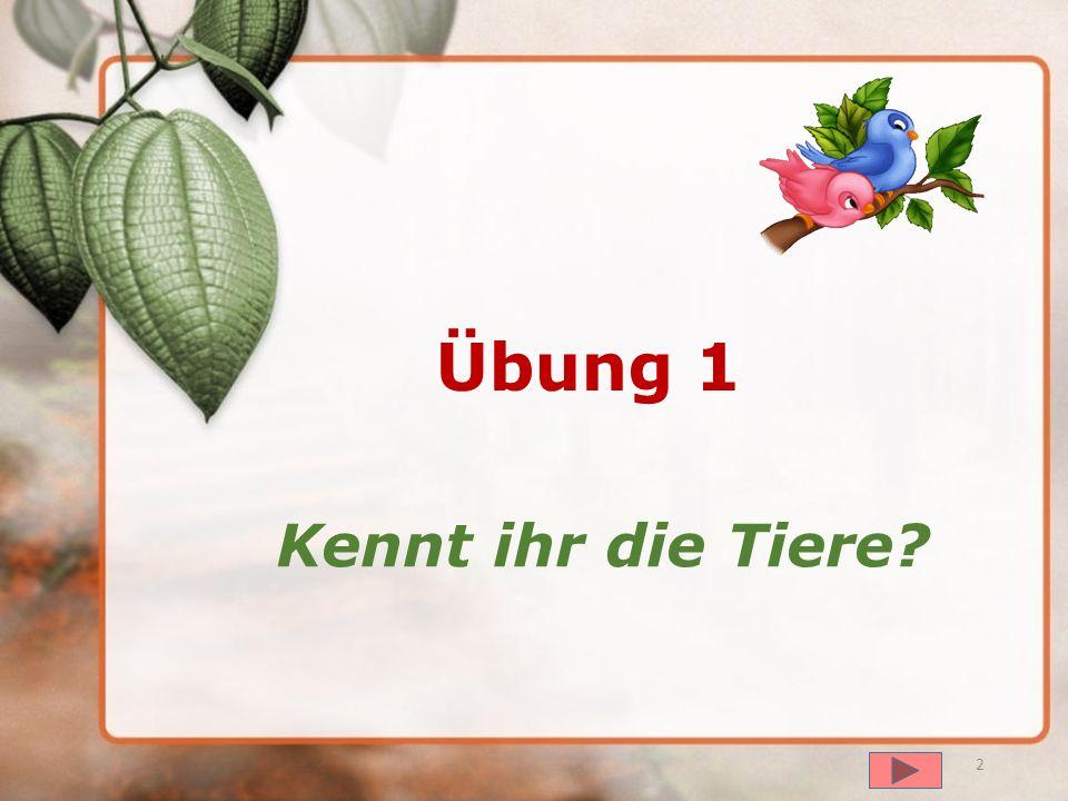 далее Übungen Klasse 4 Tiere Учитель немецкого языка МОУ Львовская СОШ № 4 г.о. Подольск Хотинец Татьяна Владимировна