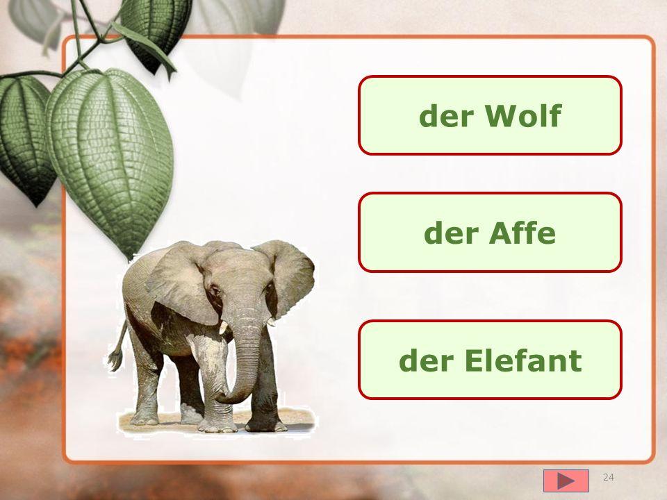 далее der Wolf der Affe die Giraffe 23