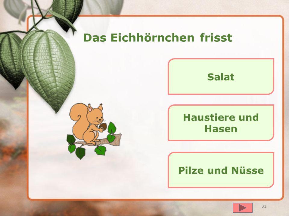 далее 30 Der Igel frisst Fisch und Honig Beeren und Pilze Hasen und Vögel