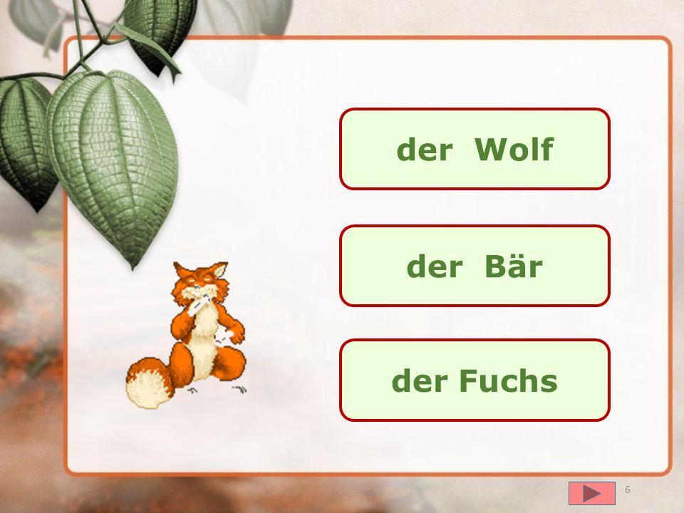 далее das Eichhörnchen der Fuchs der Hund 5