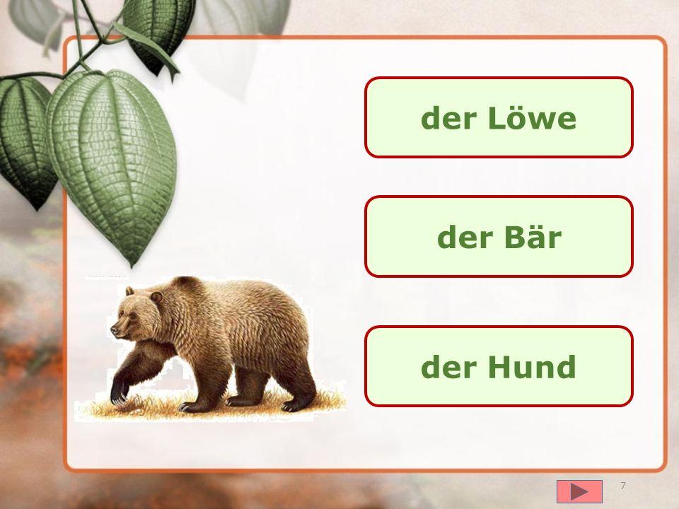 далее der Wolf der Bär der Fuchs 6