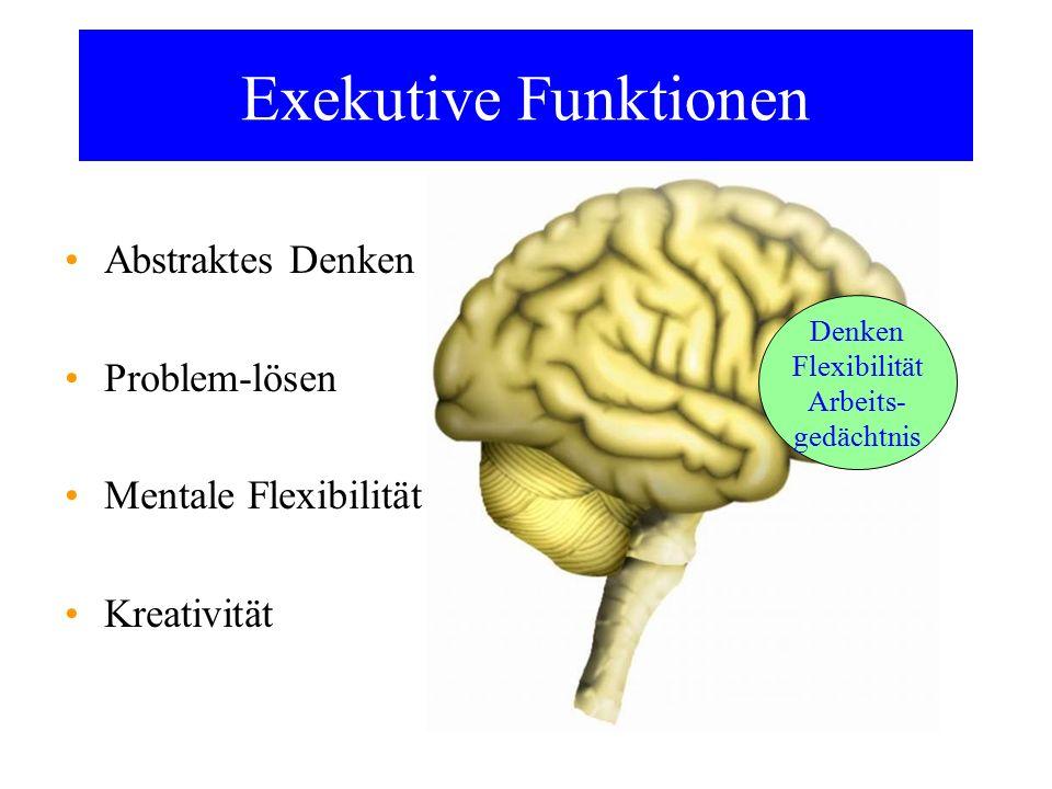 Exekutive Funktionen Abstraktes Denken Problem-lösen Mentale Flexibilität Kreativität Denken Flexibilität Arbeits- gedächtnis