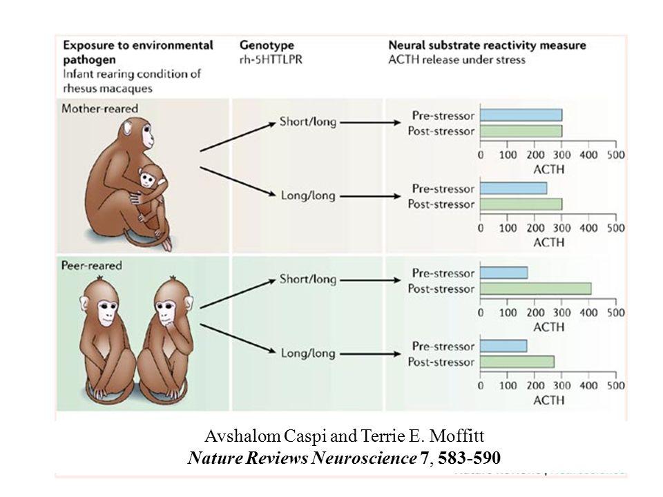 Avshalom Caspi and Terrie E. Moffitt Nature Reviews Neuroscience 7, 583-590