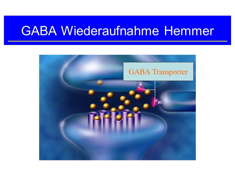 GABA Wiederaufnahme Hemmer GABA Transporter