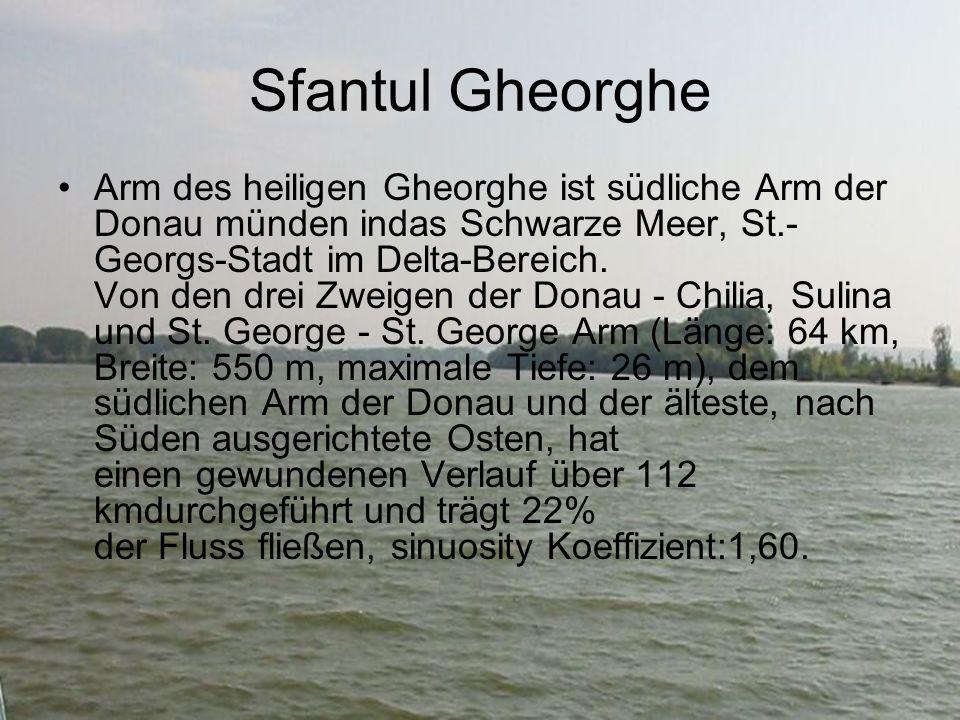 Sfantul Gheorghe Arm des heiligen Gheorghe ist südliche Arm der Donau münden indas Schwarze Meer, St.- Georgs-Stadt im Delta-Bereich.