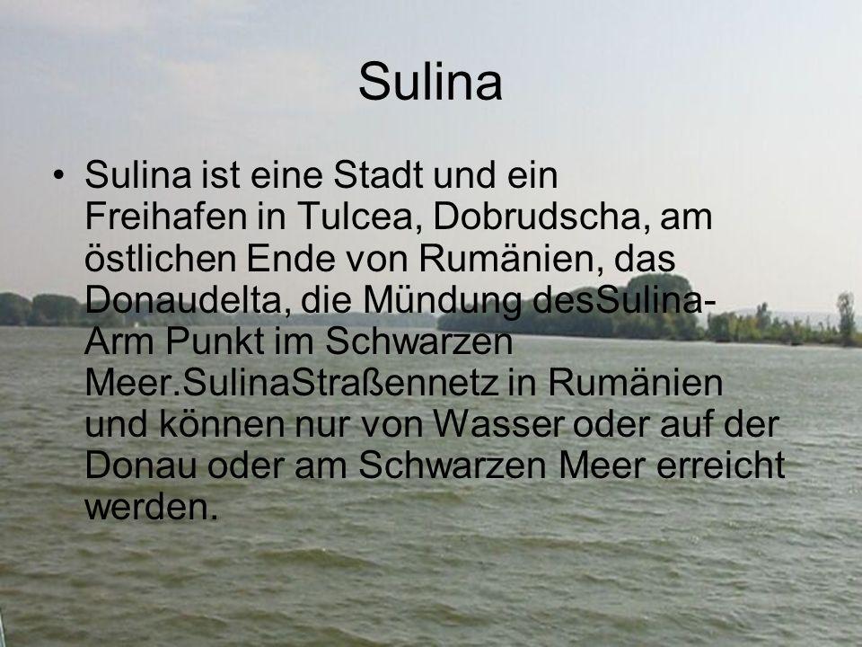 Sulina Sulina ist eine Stadt und ein Freihafen in Tulcea, Dobrudscha, am östlichen Ende von Rumänien, das Donaudelta, die Mündung desSulina- Arm Punkt im Schwarzen Meer.SulinaStraßennetz in Rumänien und können nur von Wasser oder auf der Donau oder am Schwarzen Meer erreicht werden.