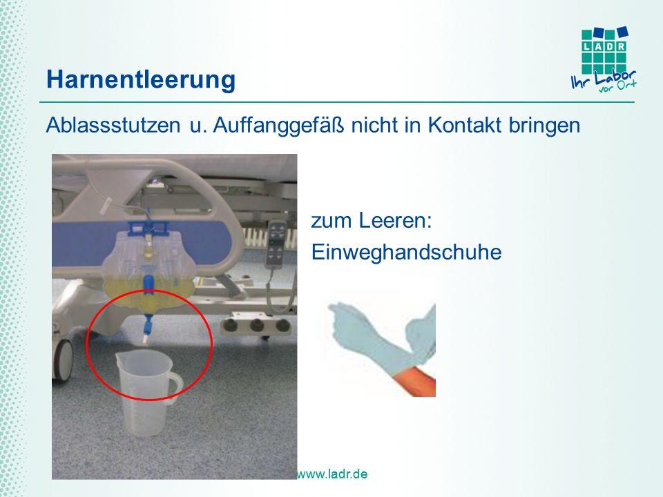 www.ladr.de Harnentleerung Ablassstutzen u. Auffanggefäß nicht in Kontakt bringen zum Leeren: Einweghandschuhe