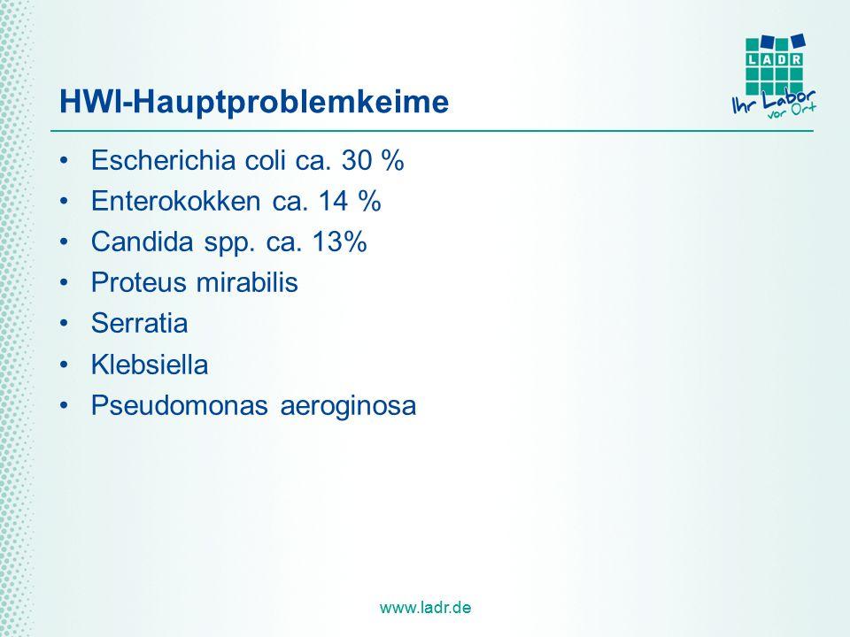 www.ladr.de HWI-Hauptproblemkeime Escherichia coli ca. 30 % Enterokokken ca. 14 % Candida spp. ca. 13% Proteus mirabilis Serratia Klebsiella Pseudomon
