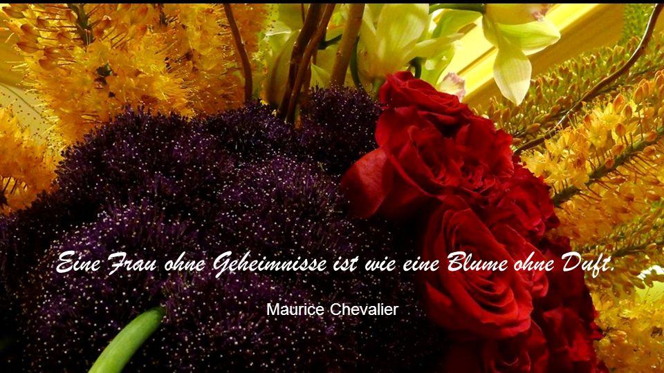 Blumen können nicht blühen ohne die Wärme der Sonne. Menschen können nicht Mensch werden ohne die Wärme der Freundschaft. Phil Bosmans