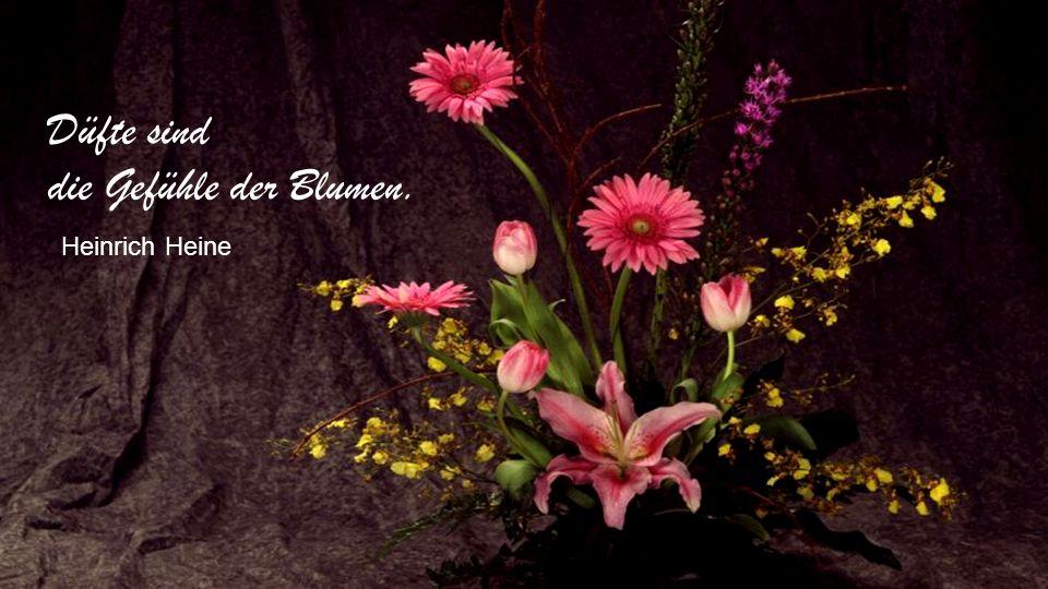 Düfte sind die Gefühle der Blumen. Heinrich Heine