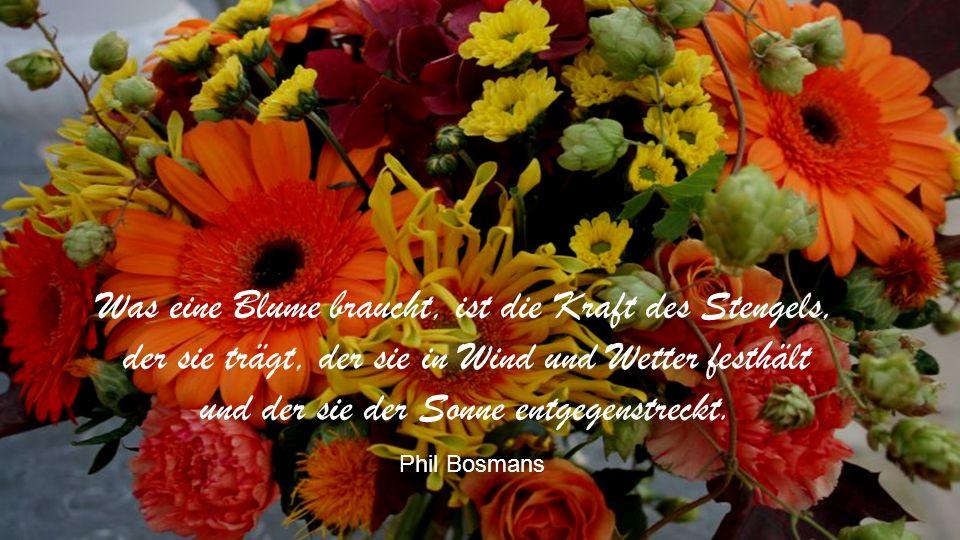 Die Blumen haben ebensoviel Recht zu leben wie wir. Albert Schweizer