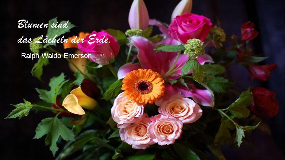 Der Duft der Blumen ist weit süßer in der Luft als in der Hand. Sir Francis von Verulam Bacon