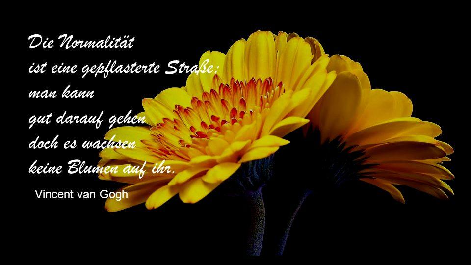 Ein Kelch, ein Blatt, ein Dorn An irgendeinem Sommermorgen – Ein Schälchen Tau – Bienen, ein oder zwei – Ein Windhauch – Rascheln in den Zweigen – Und ich bin eine Rose.